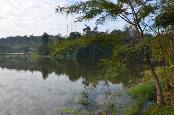 20120115-080932.jpg